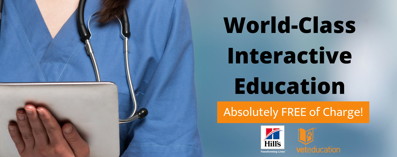 The 7th Annual International Online Vet Nurse Conference