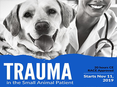Click here for Trauma in the Small Animal Patient