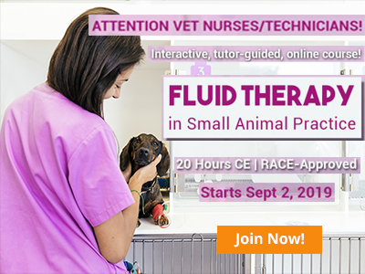 Click here for Fluid Therapy Course