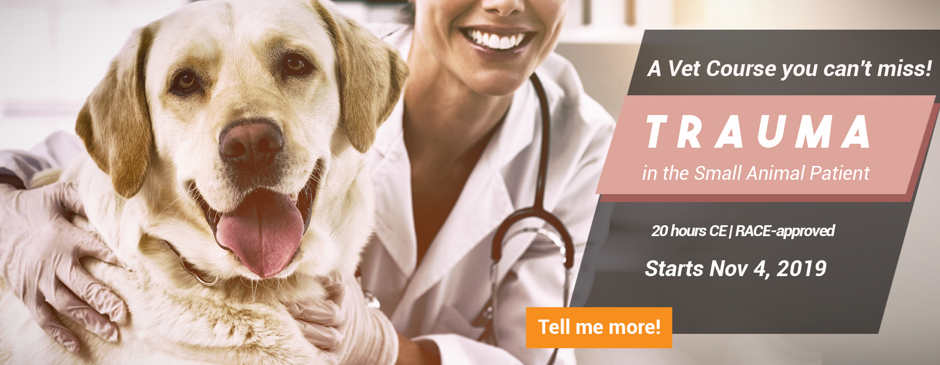 Vet Education - Get Your Veterinary Continuing Education