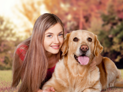 Toceranib Use in Dogs and Cats