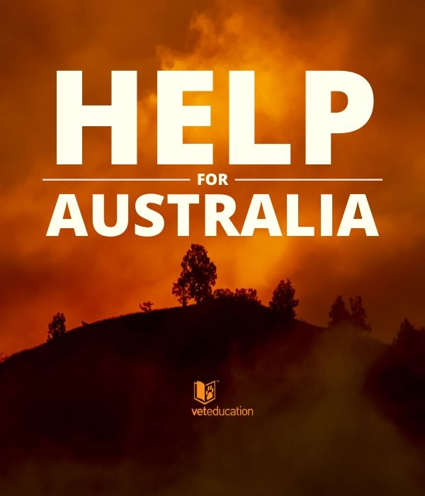 Pray for Australia - VE