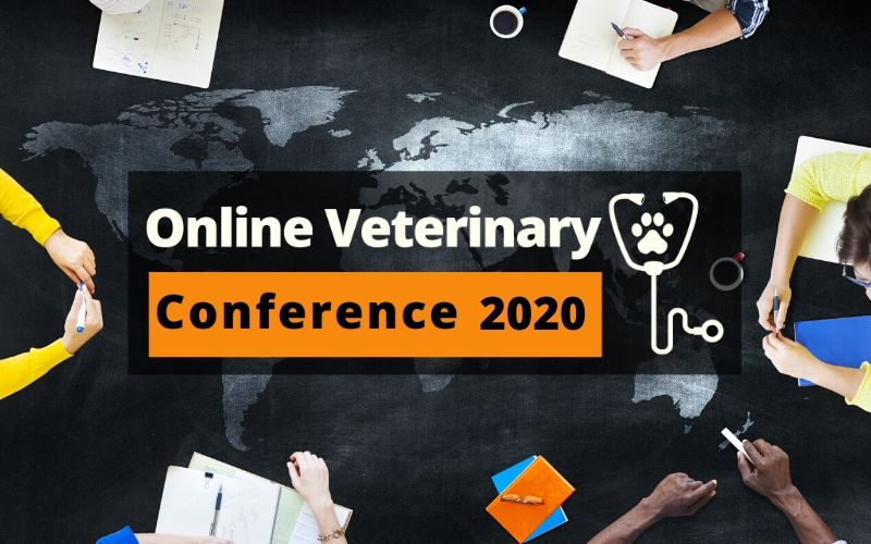 online veterinary conference