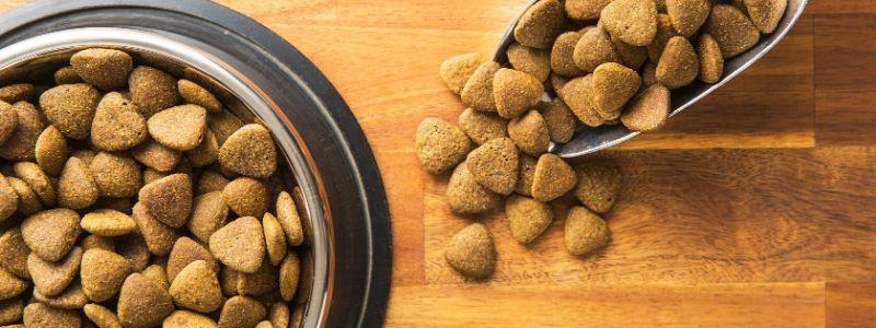 pet-food-myth-recent-grad